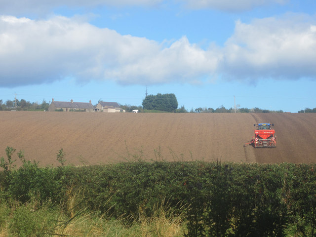 Sowing winter cereals near Letham Shank