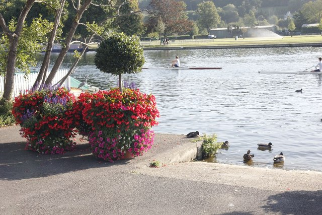 Planters by the slipway