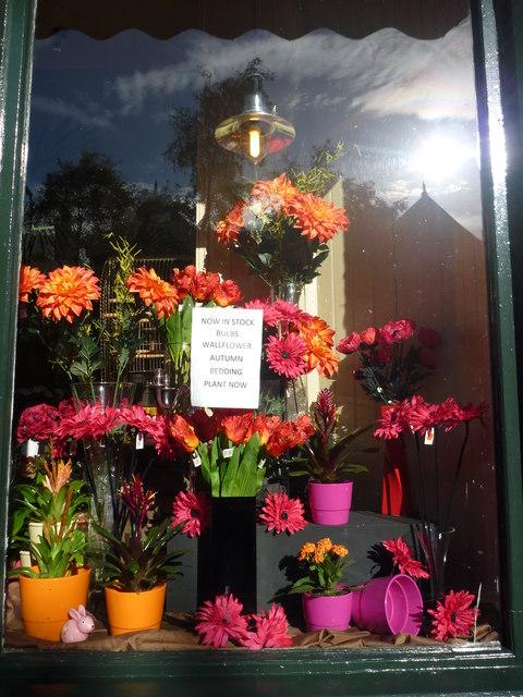 Edinburgh Townscape Florist S Window 169 Richard West