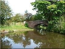 SO8785 : Middle Bridge by Christine Johnstone