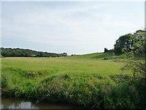 SO8785 : Farmland near Stapenhill Farm by Christine Johnstone