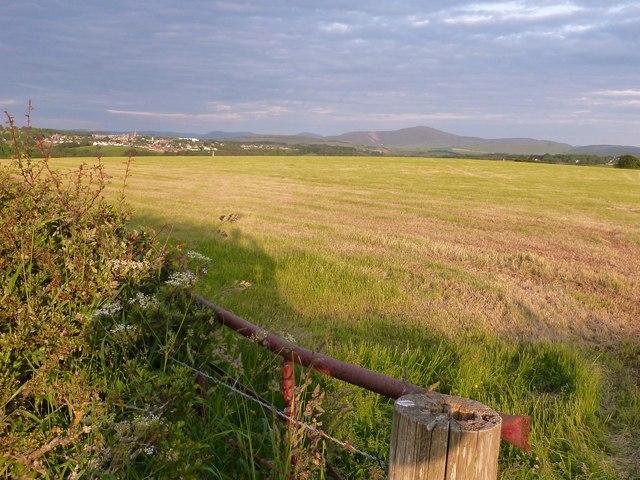 Fields next to the Nemphlar Moor Road