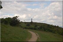 SJ9693 : Werneth Low Country Park by Trevor Harris