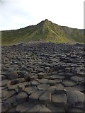 C9444 : Looking inland across the Giant's Causeway by David Smith