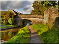 SJ9273 : Macclesfield Canal, Bridge#39 (Holland's Bridge) by David Dixon
