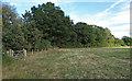 TL4001 : Field boundary near Brookmeadow Wood by Roger Jones