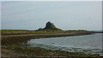 NU1341 : Lindisfarne Castle by Richard Cooke