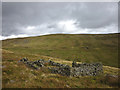 NY7623 : Ruined sheepfold, upper Scordale by Karl and Ali