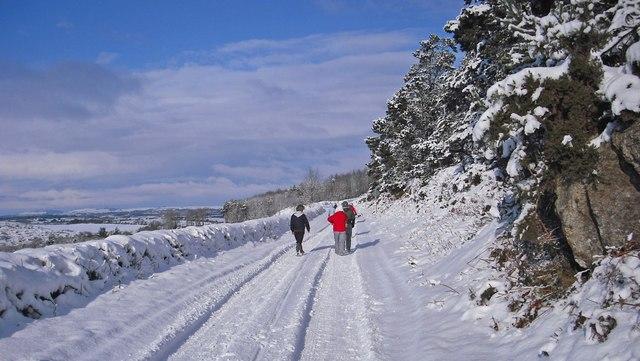 Winter scene at Ballyscanlon