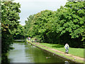 SP1491 : Birmingham and Fazeley Canal by Castle Vale, Birmingham by Roger  Kidd