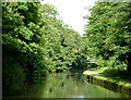 SP1492 : Birmingham and Fazeley Canal near Minworth, Birmingham by Roger  Kidd