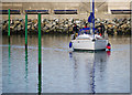 J5082 : Yacht 'Raptor' at Bangor by Rossographer
