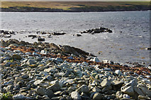 HP6301 : Banks, Ham Ness by Mike Pennington