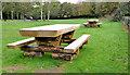 J3875 : Picnic tables, Belfast by Albert Bridge