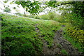 SX6861 : Bridleway past Overbrent Woods by Graham Horn
