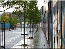 J3274 : Cupar Way, Belfast by pam fray