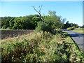 TL2479 : The road to Wennington Wood by Marathon