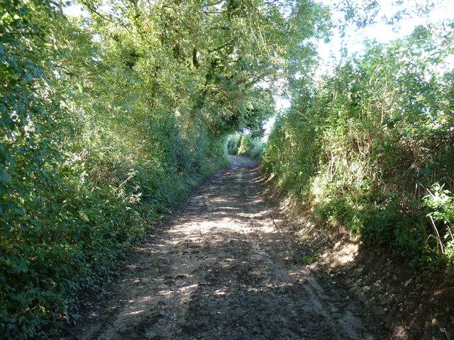 Footpath 485 to Monkton Farm