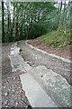 SX7878 : Haytor granite tramway by Graham Horn