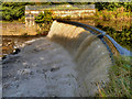SJ9091 : Weir on the River Tame, Reddish Vale Country Park by David Dixon