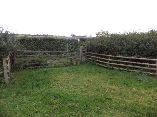 Gate, stile and dog gate by Higher Lane