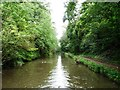 SP0274 : Tree-lined cutting, Worcs & Birmingham Canal by Christine Johnstone