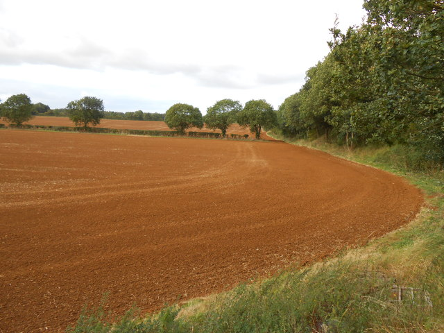 Newly Sown Fields at Wroxton