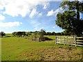 NZ1450 : View of Iveston by Robert Graham