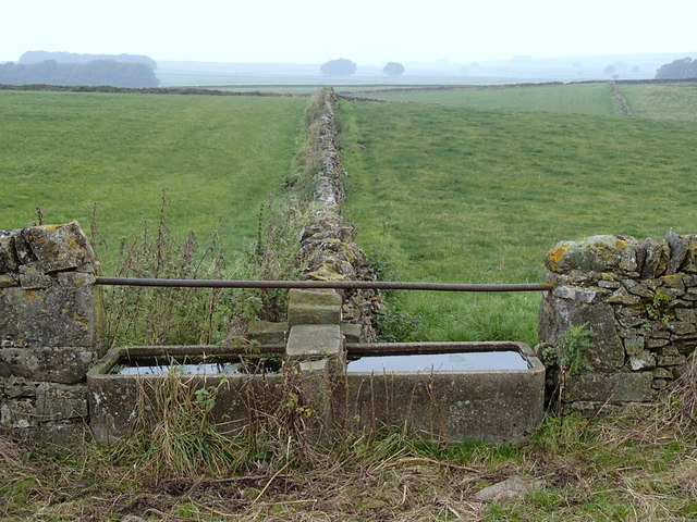 Stone trough and dry stone walls