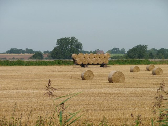 Cart full of straw bales