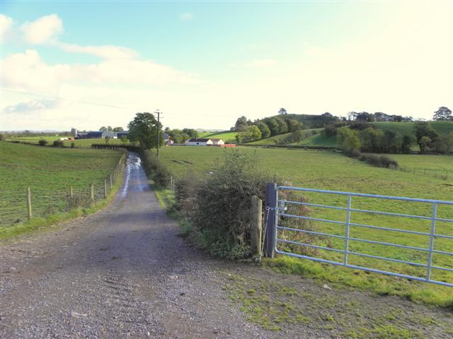 Lane, Laragh