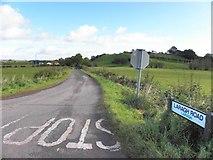 H5366 : Laragh Road by Kenneth  Allen