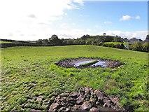 H5366 : A muddy field, Beragh by Kenneth  Allen