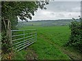 SX3170 : View across the Lynher Valley by Robin Drayton
