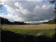 SU7431 : Farmland at Empshott Green by Basher Eyre