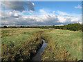 TQ8097 : Fenn Creek by Roger Jones