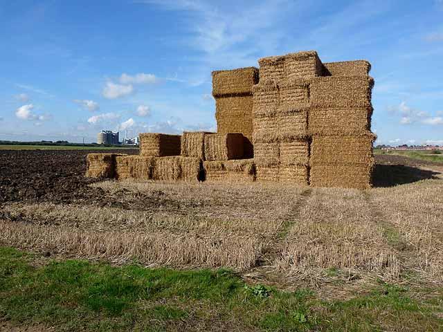 Straw bales near Bardney