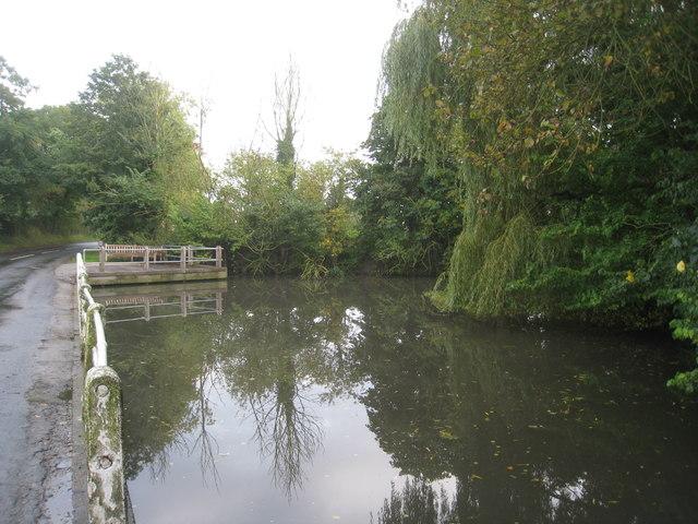 Pond, Lund