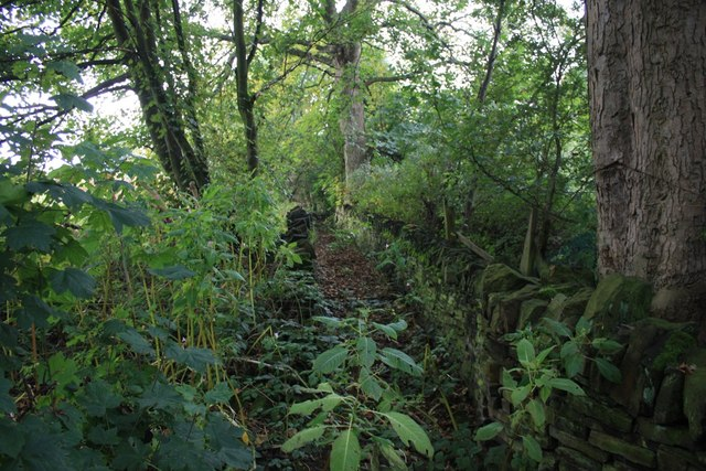 Definitive footpath east of Acres Hall, Pudsey