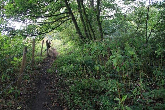 Alternative footpath east of Acres Hall, Pudsey