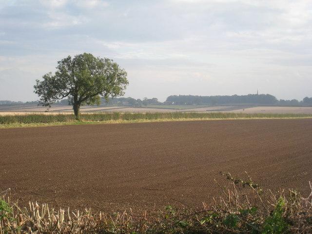 View towards South Dalton