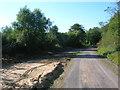 SN3802 : Wales Coast Path in Pembrey Forest by Simon Mortimer