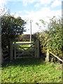 SP9727 : Bridleway onto the Hockliffe Road by Philip Jeffrey