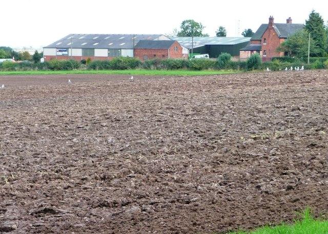 Ploughed field, west of Belmont Farm