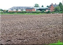 SK1825 : Ploughed field, west of Belmont Farm by Christine Johnstone