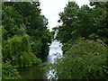 TQ2979 : St James's Park Lake through the trees by Graham Robson