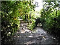 SD9201 : Knott Lanes, Bardsley - Oldham by John Topping