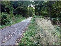 SK2652 : Carsington Water foot and cycle path by Graham Hogg