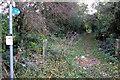 SP8629 : Bridleway signpost at the end of Dorcas Lane by Philip Jeffrey