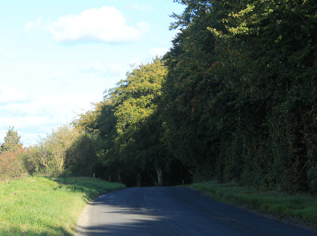 2012 : Minor road between Chitterne and Tilshead